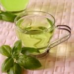 Green Tea Low Fat Weight Loss