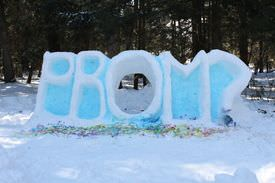Snowy Promposal Idea