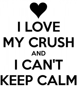 I Love My Crush and Can't Keep Calm